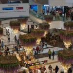 DLF-Mall